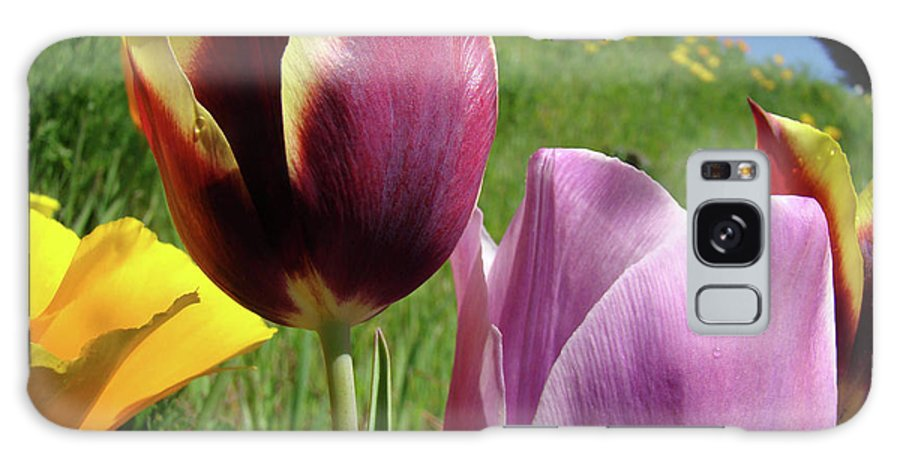 �tulips Artwork� Galaxy S8 Case featuring the photograph Tulips Artwork Tulip Flowers Spring Meadow Nature Art Prints by Baslee Troutman