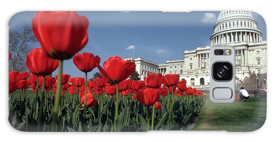 Flowers Galaxy S8 Case featuring the photograph Tulips At The Capitol by Carl Purcell