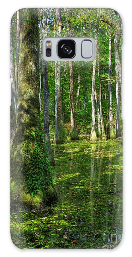 2009 Galaxy S8 Case featuring the photograph Tupelo Trees In Mississippi by Larry Braun
