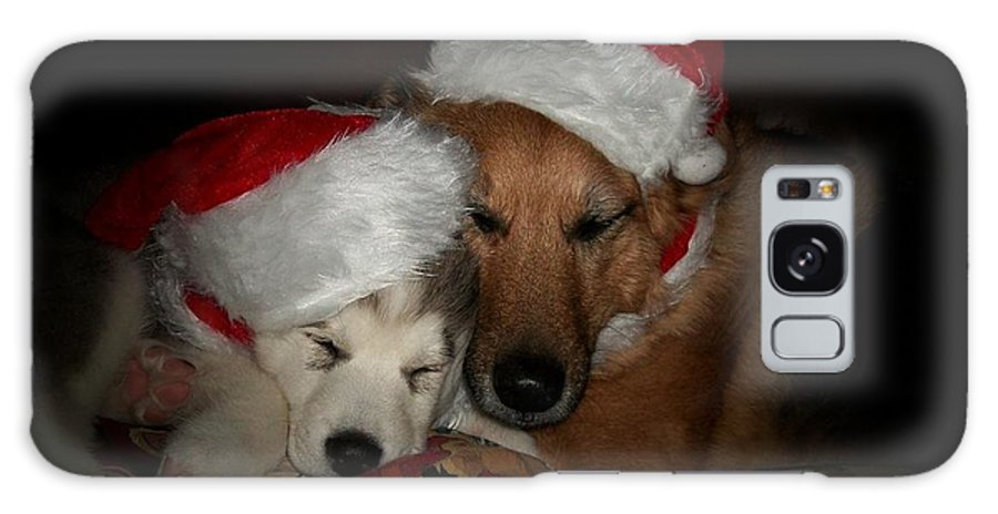 Dog Galaxy S8 Case featuring the photograph Twas The Night Before Christmas by Marjorie Imbeau
