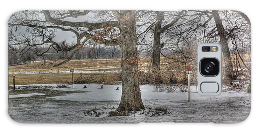 Oak Trees Galaxy S8 Case featuring the photograph Twelve Oaks by David Bearden
