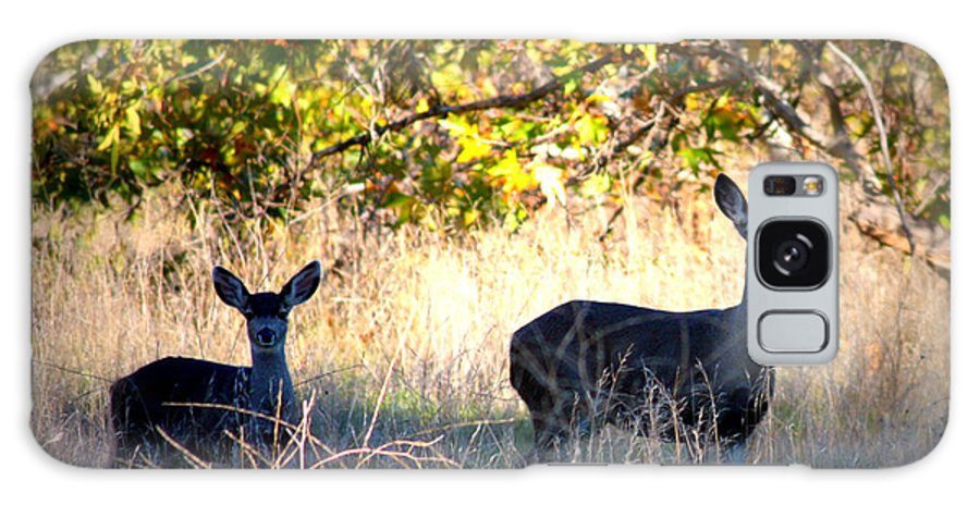 Animal Galaxy S8 Case featuring the photograph Two Deer In Autumn Meadow by Carol Groenen