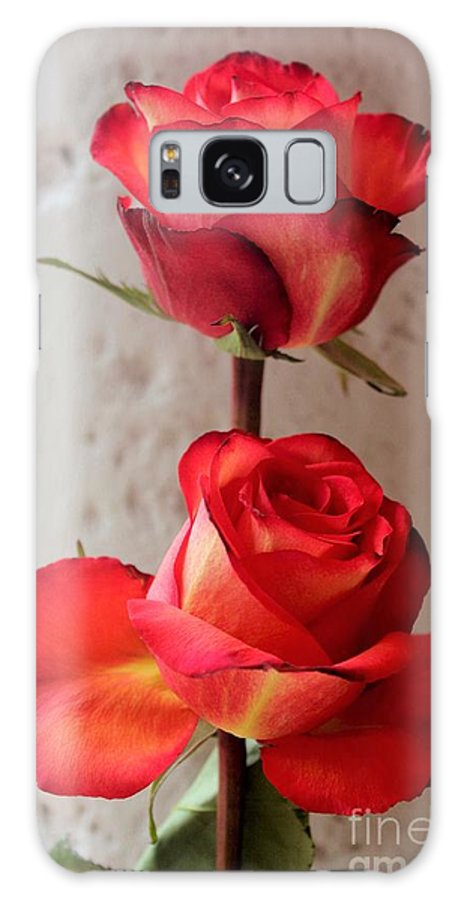 Flower Galaxy S8 Case featuring the photograph Two Roses by Mesa Teresita