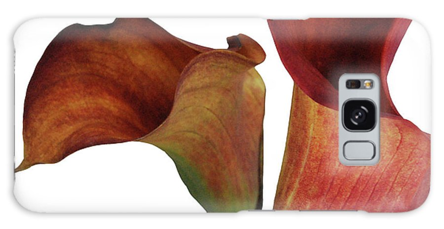 Rust Galaxy S8 Case featuring the photograph Two Rust Calla Lilies Square by Heather Kirk