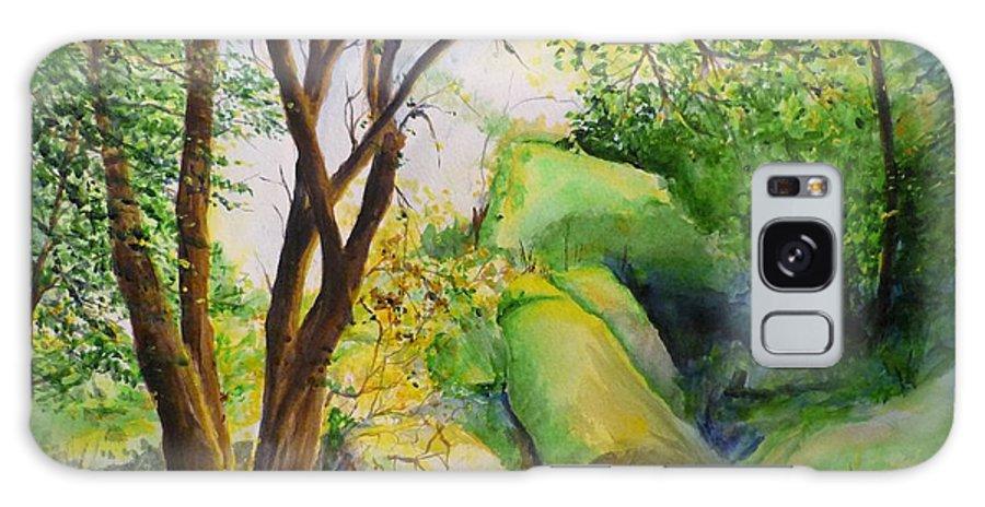 Wood Galaxy S8 Case featuring the painting Un Rincon En El Valle De Los Suenos by Lizzy Forrester