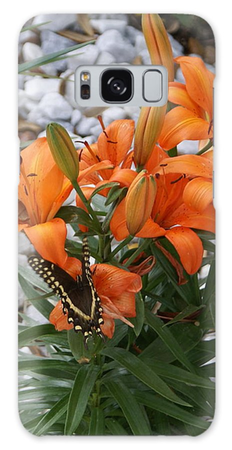 Flower Galaxy S8 Case featuring the photograph Untitled by Debbie May