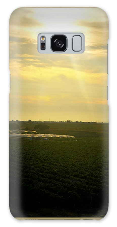 Vineyard Galaxy S8 Case featuring the photograph Valley Vines by Sarah Miller