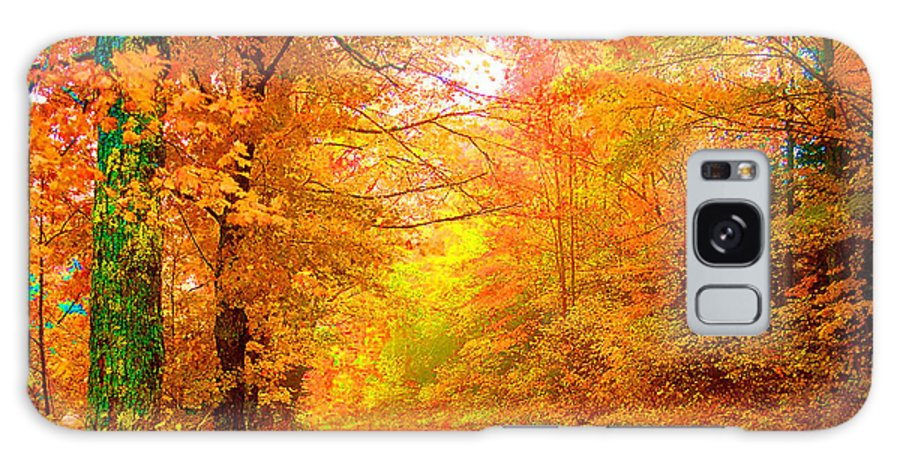 Landscape Galaxy Case featuring the photograph Vermont Autumn by Vicky Brago-Mitchell
