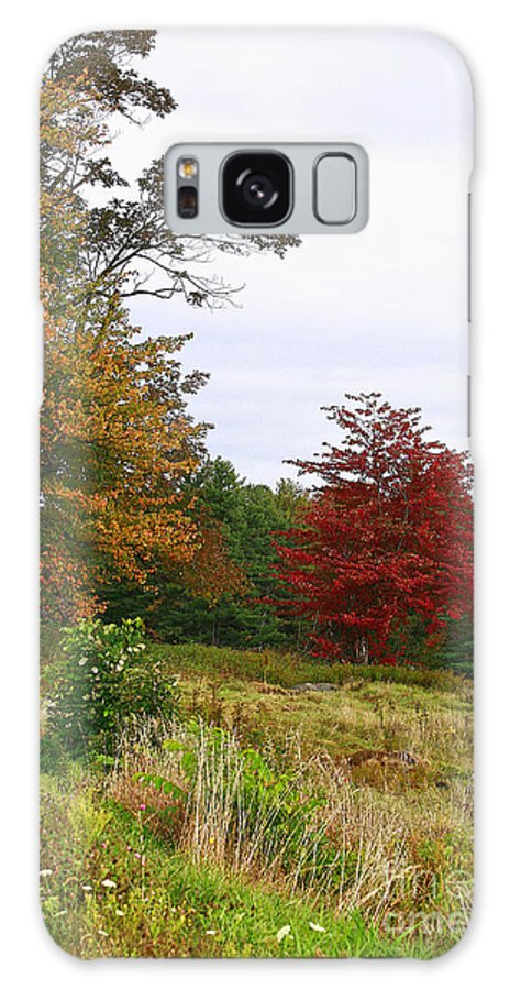 Fall Galaxy S8 Case featuring the photograph Vermont Roadside Color by Deborah Benoit