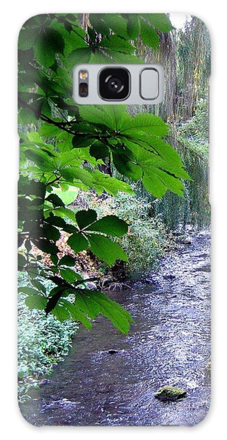 Vernon Creek Galaxy S8 Case featuring the photograph Vernon Creek by Will Borden