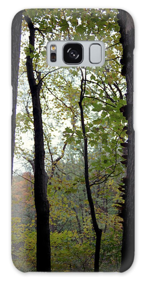 Tree Galaxy S8 Case featuring the photograph Vertical Limits by Randy Oberg