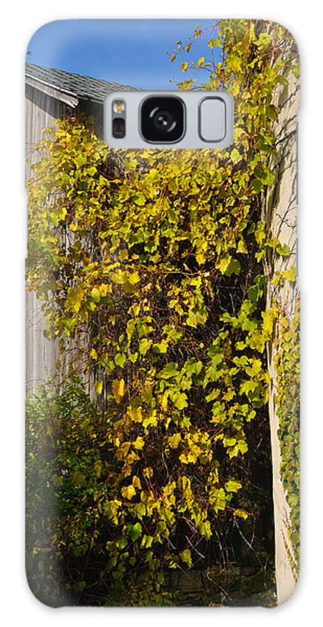 Silo Galaxy S8 Case featuring the photograph Vined Silo by Tim Nyberg