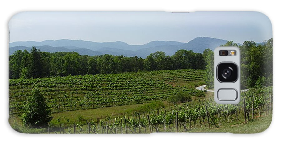 Vineyard Galaxy Case featuring the photograph Vineyard by Flavia Westerwelle