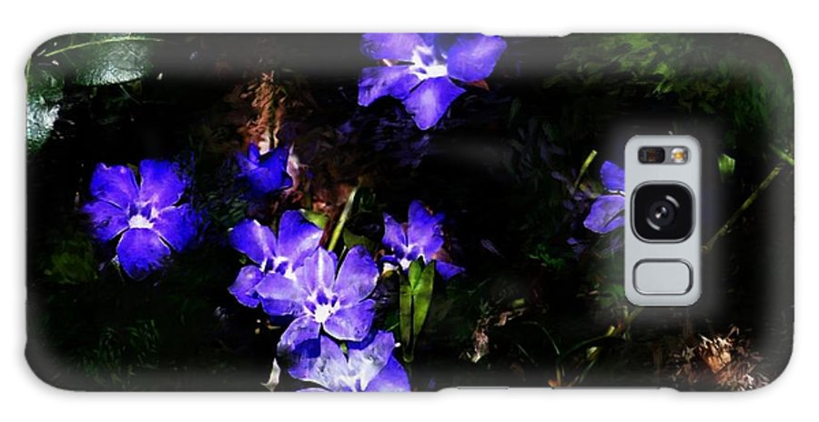 Spring Galaxy Case featuring the photograph Violet by David Lane