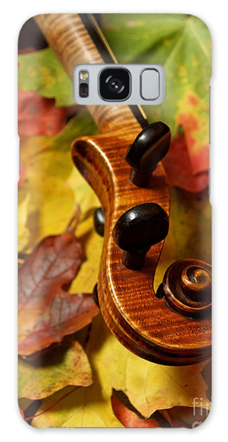 Violin Galaxy Case featuring the photograph Violin Scroll With Fall Maple Leaves by Anna Lisa Yoder