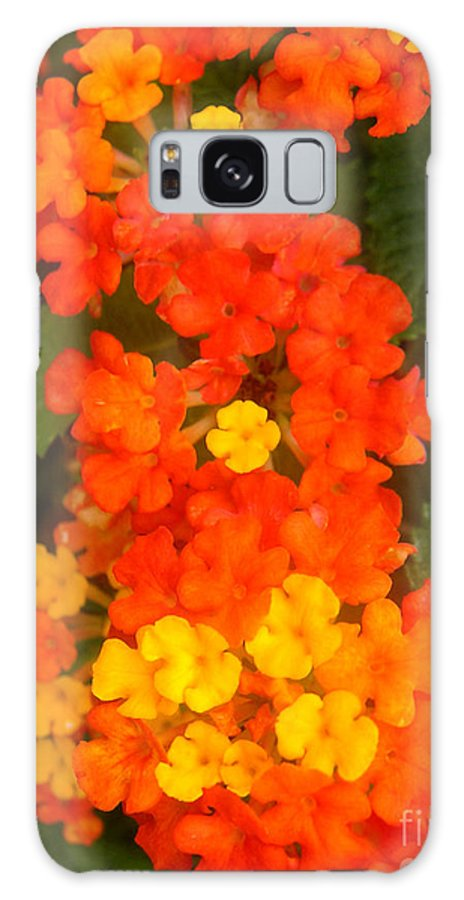 Nature Galaxy Case featuring the photograph Volcanic Display by Lucyna A M Green