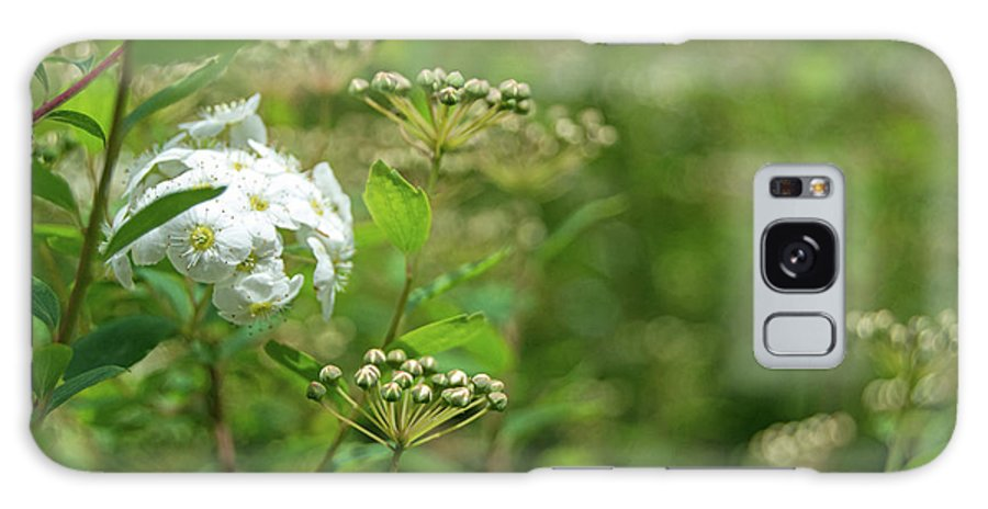 White Flower Galaxy S8 Case featuring the photograph Waiting For Bloom by Edmund Mazzola