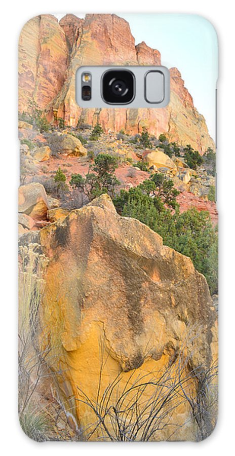 Grand Staircase Escalante National Monument Galaxy S8 Case featuring the photograph Wall Of Color by Ray Mathis