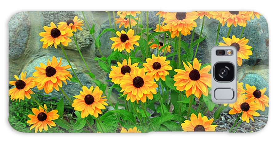 Stone Galaxy S8 Case featuring the photograph Wallflowers by Steve Gass