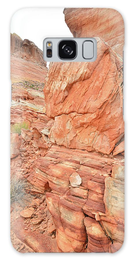 Valley Of Fire State Park Galaxy S8 Case featuring the photograph Wash 3 Of Valley Of Fire by Ray Mathis