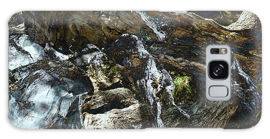 Trees Galaxy S8 Case featuring the photograph Washed Away by Kelly Jade King