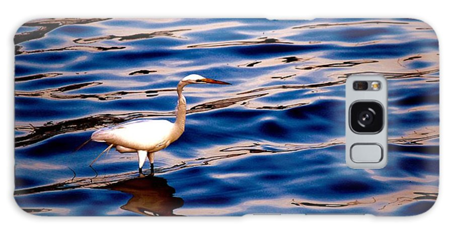 Water Bird Series Galaxy S8 Case featuring the photograph Water Bird Series 10 by Stephen Poffenberger
