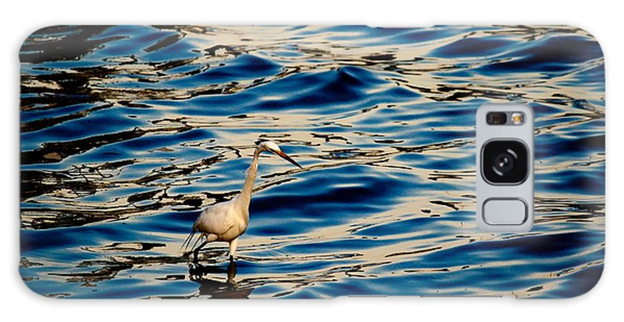 Water Bird Series Galaxy S8 Case featuring the photograph Water Bird Series 11 by Stephen Poffenberger