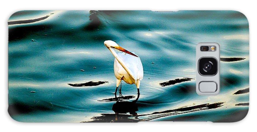 Water Bird Series Galaxy S8 Case featuring the photograph Water Bird Series 33 by Stephen Poffenberger