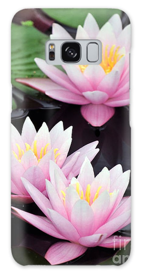 Water Lilies Galaxy S8 Case featuring the photograph water lily 91 Sunny Pink Water Lily by Terri Winkler