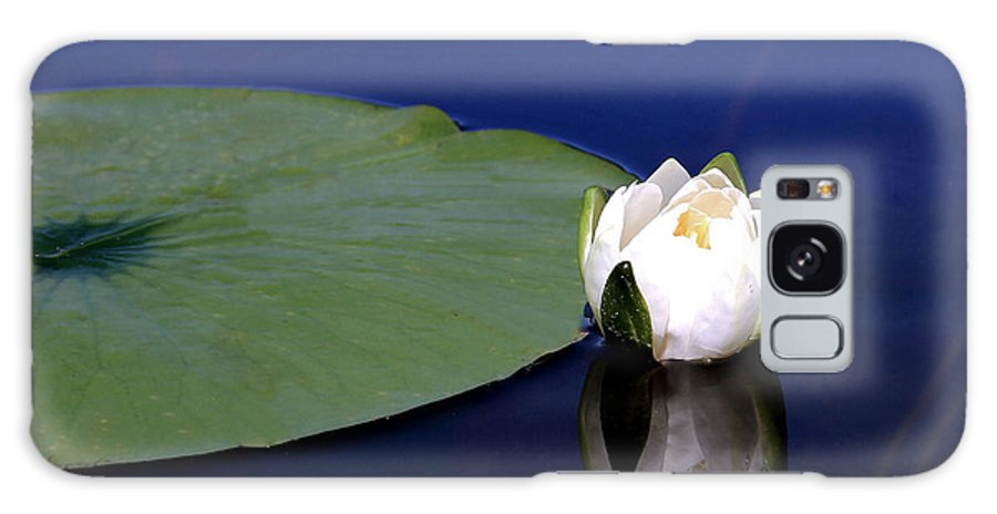 Water Lily Galaxy S8 Case featuring the photograph Water Lily by Kristin Elmquist