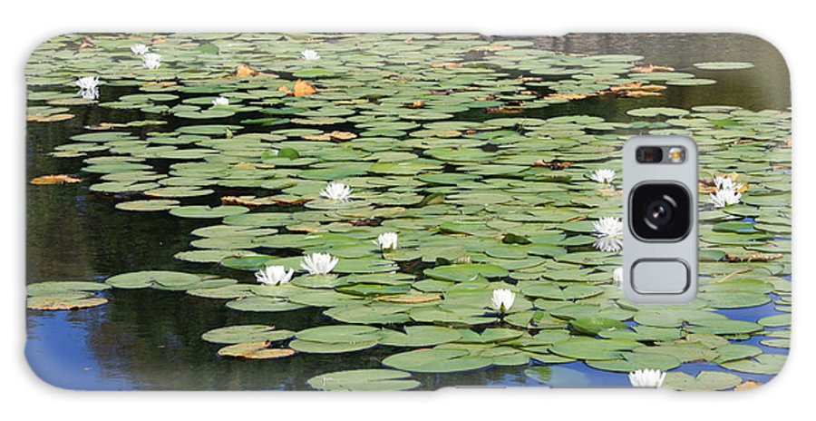 Water Galaxy S8 Case featuring the photograph Water Lily Pond by Carol Groenen