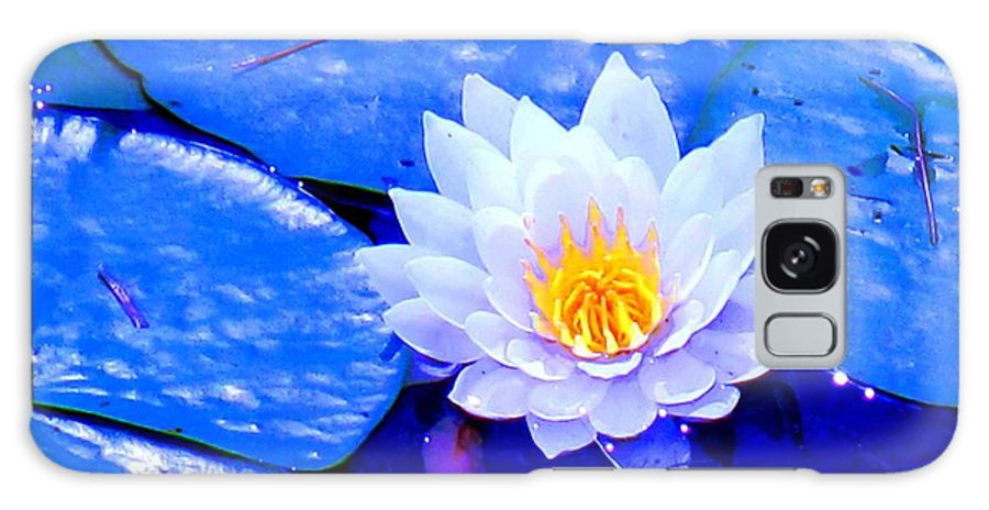 Waterlilly Galaxy S8 Case featuring the photograph Blue Water Lily by Ian MacDonald