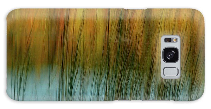 Tall Grass Galaxy S8 Case featuring the photograph Wavy by Randy Pollard