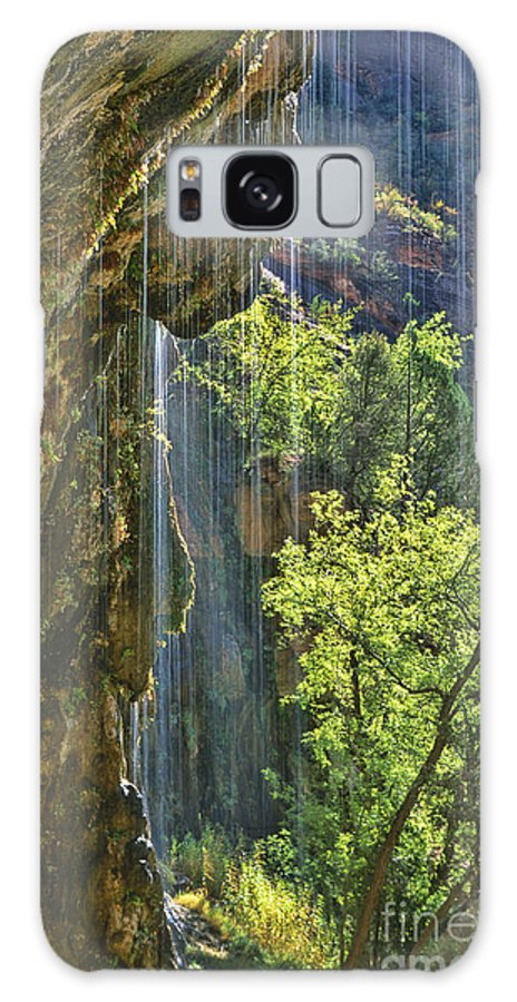 Southwest Galaxy S8 Case featuring the photograph Weeping Rock - Zion Canyon by Sandra Bronstein
