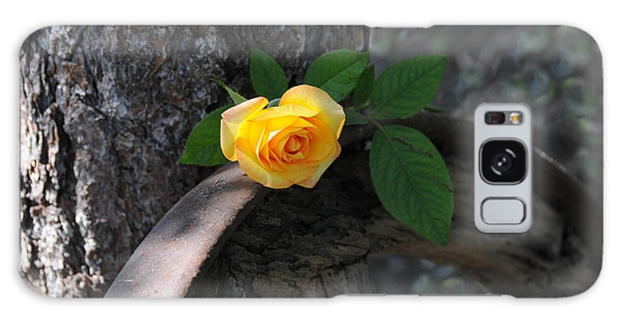 Rose Galaxy S8 Case featuring the photograph Western Yellow Rose II by Jody Lovejoy