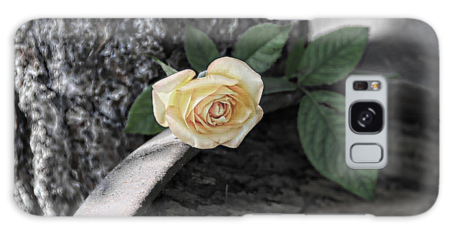 Rose Galaxy S8 Case featuring the photograph Western Yellow Rose Iv by Jody Lovejoy