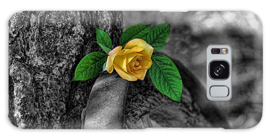 Rose Galaxy S8 Case featuring the photograph Western Yellow Rose Two Tone by Jody Lovejoy