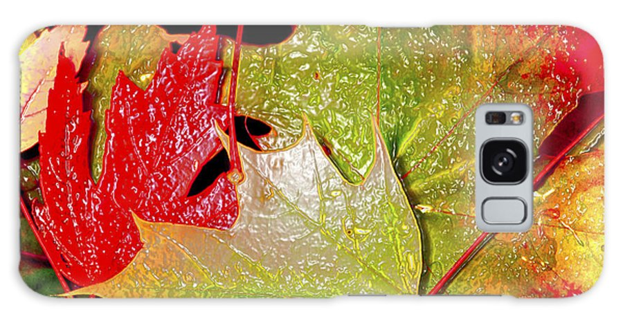 Leaves Galaxy Case featuring the photograph Wet Leaves Of Fall by Larry Keahey