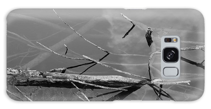 Black And White Galaxy S8 Case featuring the photograph Wet Wood by Rob Hans
