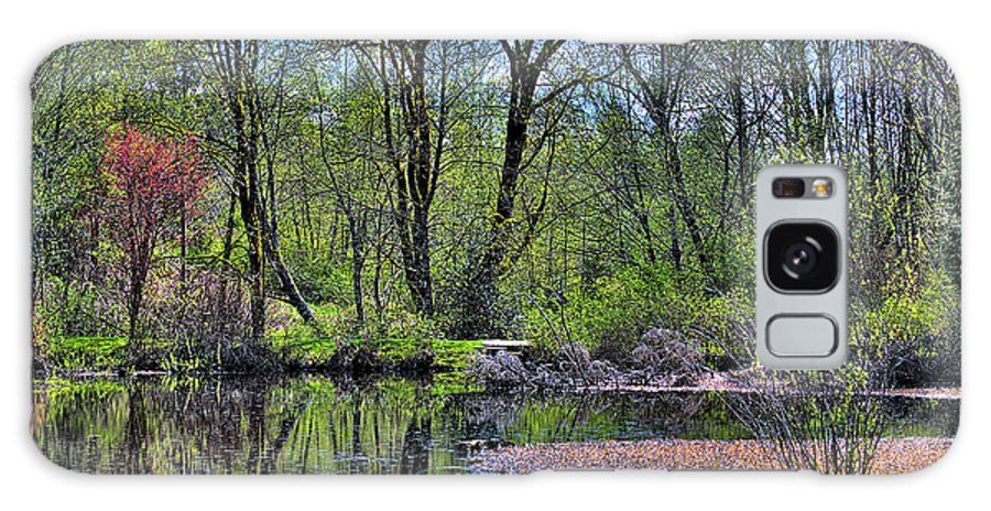 West Hylebos Galaxy S8 Case featuring the photograph Wetlands Lake by David Patterson