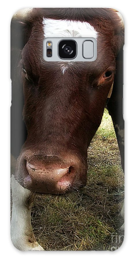 Ox Galaxy S8 Case featuring the photograph What Are You Staring At by RC DeWinter