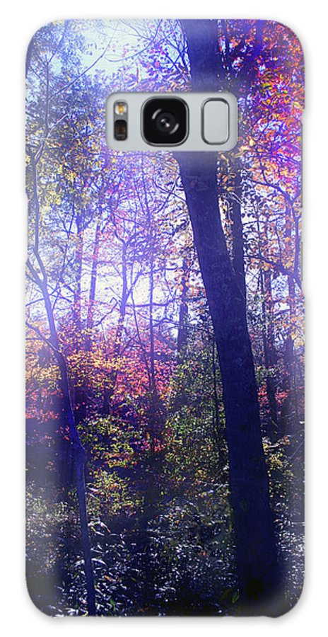 Forest Galaxy S8 Case featuring the photograph When Forests Dream by Nina Fosdick