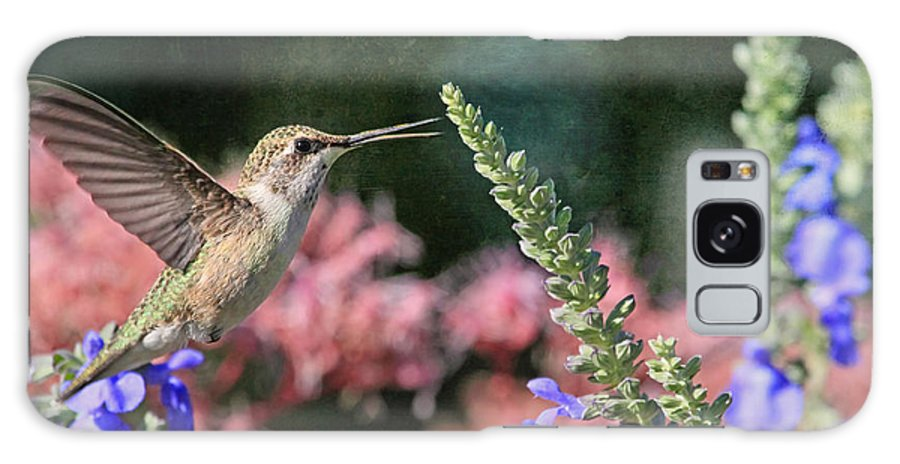 Hummingbird Galaxy S8 Case featuring the photograph Whistle While You Work by Donna Kennedy