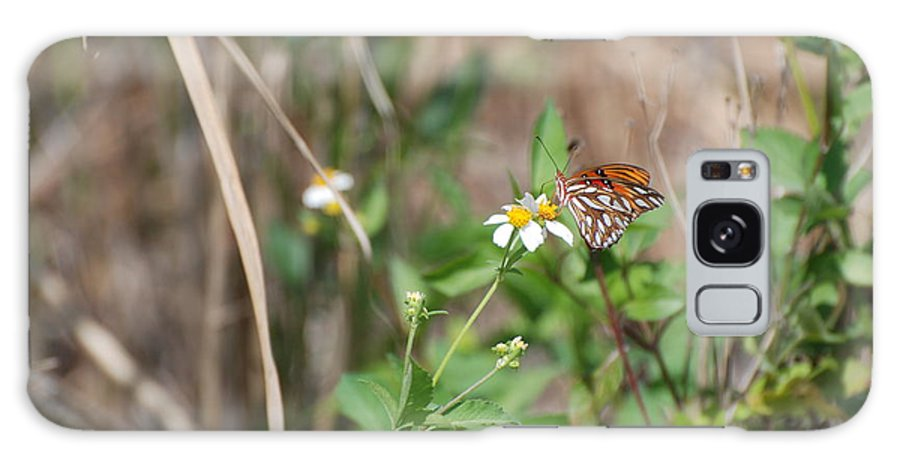 Butterfly Galaxy S8 Case featuring the photograph White Butterfly by Rob Hans