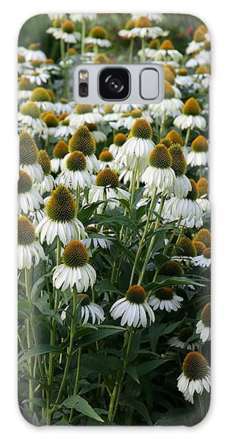 White Coneflower Galaxy S8 Case featuring the photograph White Coneflower Field by Christiane Schulze Art And Photography