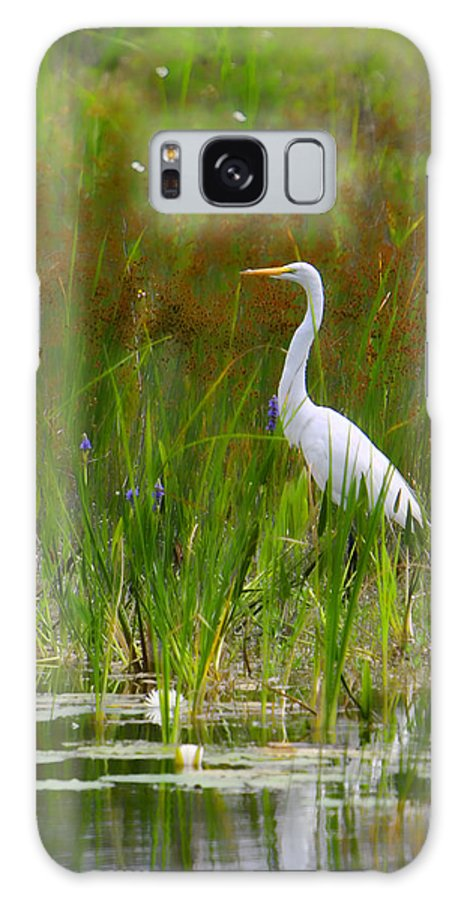 Bird Egret White Florida Swamp Pond Photograph Photography Galaxy S8 Case featuring the photograph White Egret In Waiting by Shari Jardina