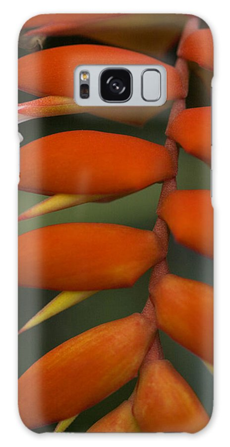 Heliconia Galaxy S8 Case featuring the photograph White Flower by Karen Ulvestad