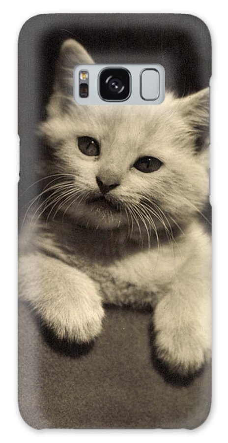 Cat Galaxy S8 Case featuring the photograph White Fluffy Kitten by German School