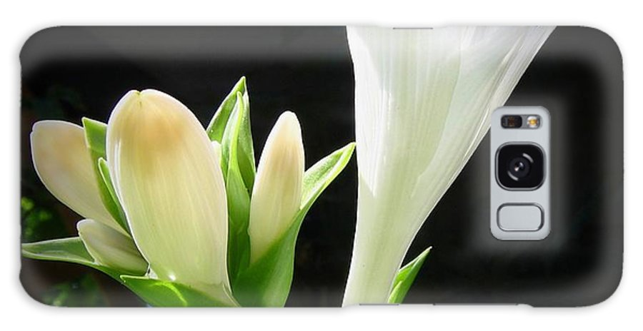 White Galaxy S8 Case featuring the photograph White Hostas Blooming 7 by Maciek Froncisz