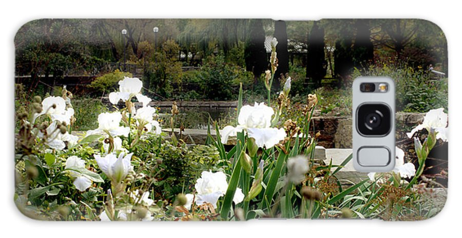 White Irises Galaxy S8 Case featuring the photograph White Irises by Codee Pyke